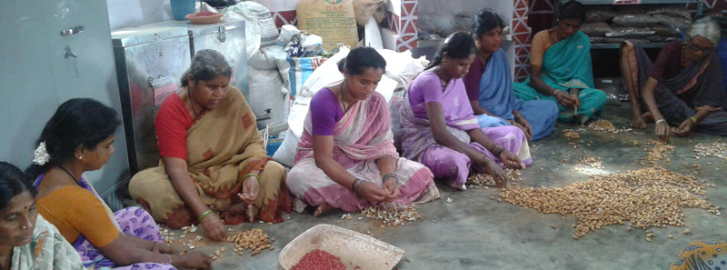 Sri Maramma CSB & seed producer group Gulaganahalli